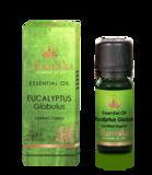 Alambika - Etherische olie: Eucalyptus Globulus Biologisch Gecertificeerd 30 ml_