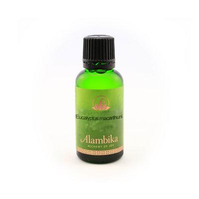 Alambika - Etherische olie: Eucalyptus Macarthurii 30 ml