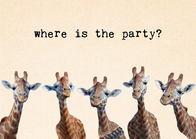 ZintenZ - Kaart: Where Is The Party?