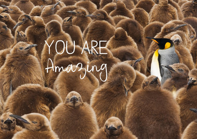 ZintenZ - Kaart: You Are Amazing