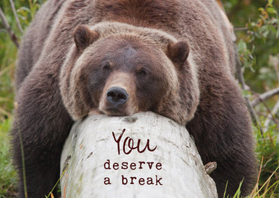 ZintenZ - Kaart: You Deserve A Brake