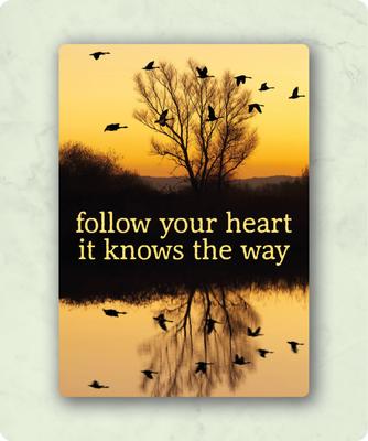 ZintenZ - Kaart: Follow your hearth it knows the way