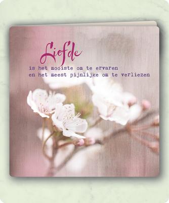 ZintenZ - Dubbele Kaart: Liefde is het mooiste om te ervaren en........