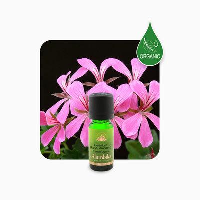 Alambika - Etherische olie: Rose Geranium Biologisch Gecertificeerd