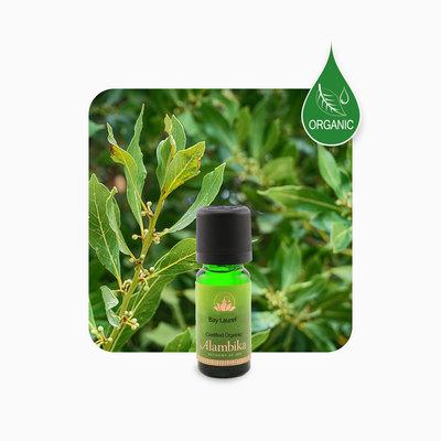 Alambika - Etherische olie: Bay Laurel / Laurier Biologisch Gecertificeerd (tht: 03-2022)