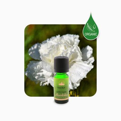 Alambika - Etherische olie: Clove Bud / Kruidnagel Biologisch Gecertificeerd 10 ml