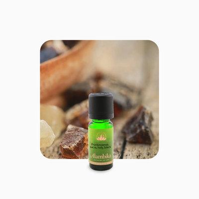 Alambika - Etherische olie: Frankincense Sacra Holy 10 ml (tht: 10-2021)