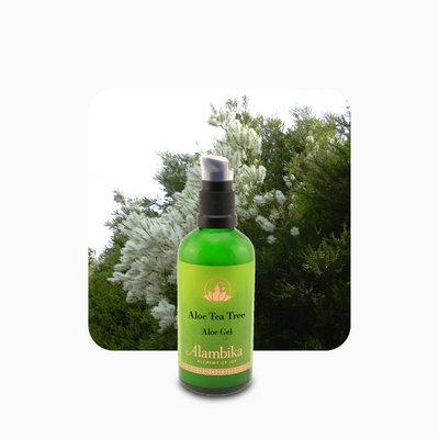 Alambika - Tea Tree Aloe Gel