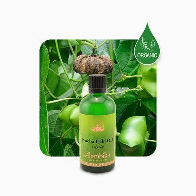 Alambika - Basis olie: Sacha Inchi Olie 100 ml (tht: 03-2021)