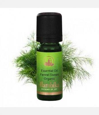 Alambika - Etherische olie: Fennel Sweet / Zoete Venkel Biologisch Gecertificeerd