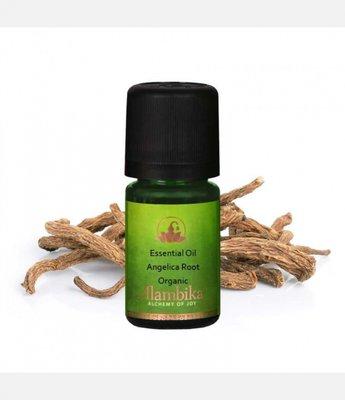 Alambika - Etherische olie: Angelica Root / Engelwortel Biologisch Gecertificeerd