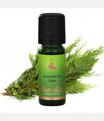 Alambika - Etherische olie: Himalaya Cedar / Ceder 10 ml