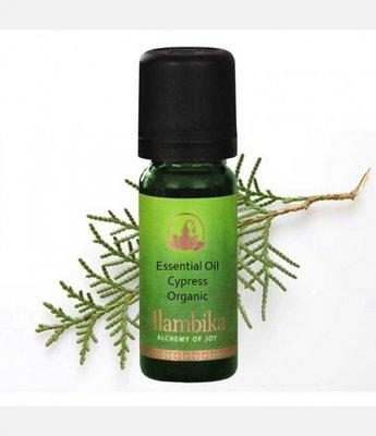 Alambika - Etherische olie: Cypress, Morocco / Cipres Biologisch Gecertificeerd