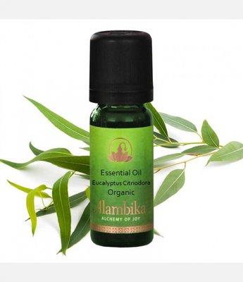 Alambika - Etherische olie: Eucalyptus Citriodora / Eucalyptus Citroen Biologisch Gecertificeerd 10 ml