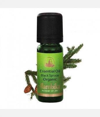 Alambika - Etherische olie: Spruce (Black Spruce) / Spar Biologisch Gecertificeerd (tht: 03-2020)