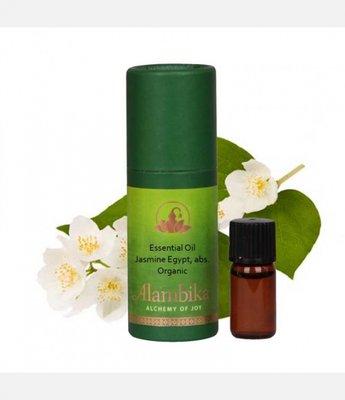 Alambika - Etherische olie: Jasmine (Egypt), Abs. / Jasmijn Biologisch Gecertificeerd 3 ml