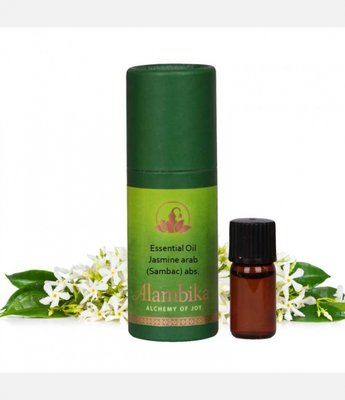 Alambika - Etherische olie: Jasmine Arab (Sambac) / Jasmijn 3 ml (tht: 08-2019)