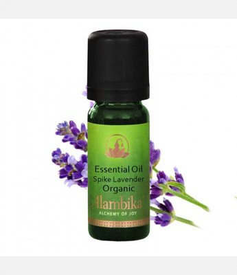 Alambika - Etherische olie: Spike Lavender Biologisch Gecertificeerd 30 ml (tht; 08-2019)