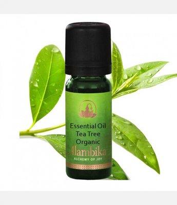 Alambika - Etherische olie: Tea Tree m.a. Biologisch Gecertificeerd 30 ml (tht: 09-2019)
