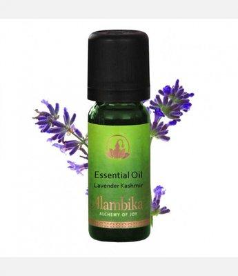 Alambika - Etherische olie: Lavender Kashmir 10 ml  (tht: 03-2020)
