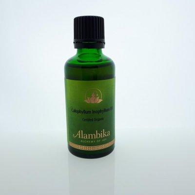 Alambika - Basis olie: Tamanu / Calophyllum Inophyllum Olie Biologisch Gecertificeerd 100 ml