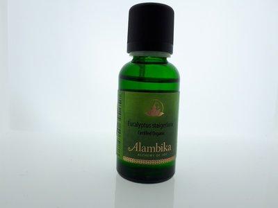 Alambika - Etherische olie: Eucalyptus Staigeriana Biologisch Gecertificeerd 30 ml (tht: 03-2020)