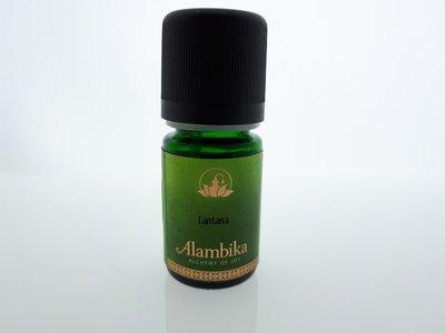 Alambika - Etherische olie: Lantana (tht: 03-2020)