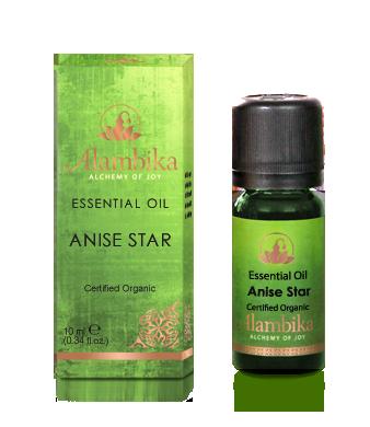 Alambika - Etherische olie: Star Anise Biologisch Gecertificeerd 30 ml (tht: 04-2022)