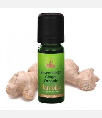 Alambika - Etherische olie: Ginger / Gember Biologisch Gecertificeerd 30 ml