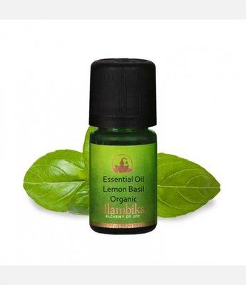 Alambika - Etherische olie: Lemon Basil Biologisch Gecertificeerd 10 ml