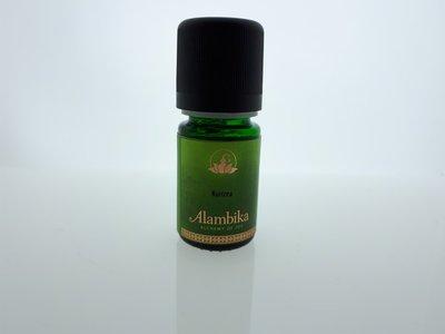 Alambika - Etherische olie: Kunzea 5 ml