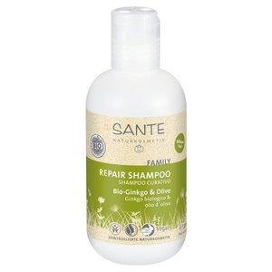 Sante - Familie Bio Ginkgo Olijf Shampoo 200 ml