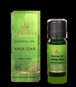 Star anise etherische olie steranijs