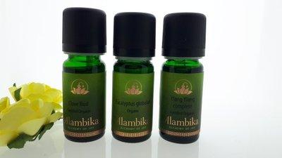 Alambika - Starterset 3: Etherische Oliën